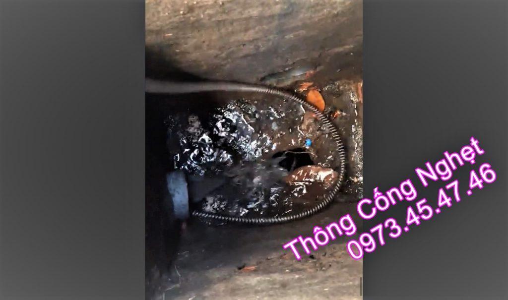 THÔNG CỐNG NGHẸT Thị Trấn Cần Thạnh Huyện Cần Giờ